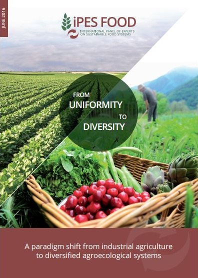 Uniformity to Diversity Article